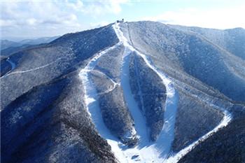 龍坪高山滑雪中心