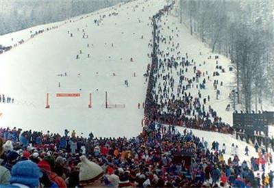 第十四屆:1984年薩拉熱窩冬奧會