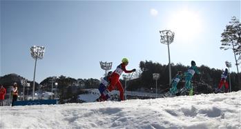 越野滑雪——女子30公裏集體出發(傳統技術)比賽賽況