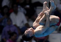 中國跳水8金到手,王涵、謝思埸再添彩