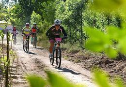 全民健身低碳騎行倡環保