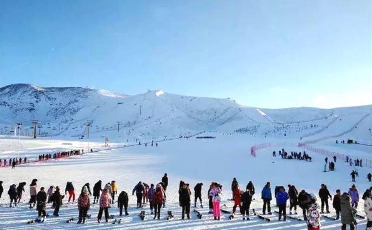 """新疆阿勒泰:中小學體育課""""搬""""到滑雪場"""