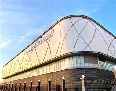 全國首個殘疾人冰上項目訓練專業場館在京完工