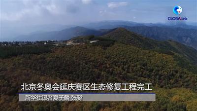 全球連線 (走近冬奧)北京冬奧會延慶賽區生態修復工程完工